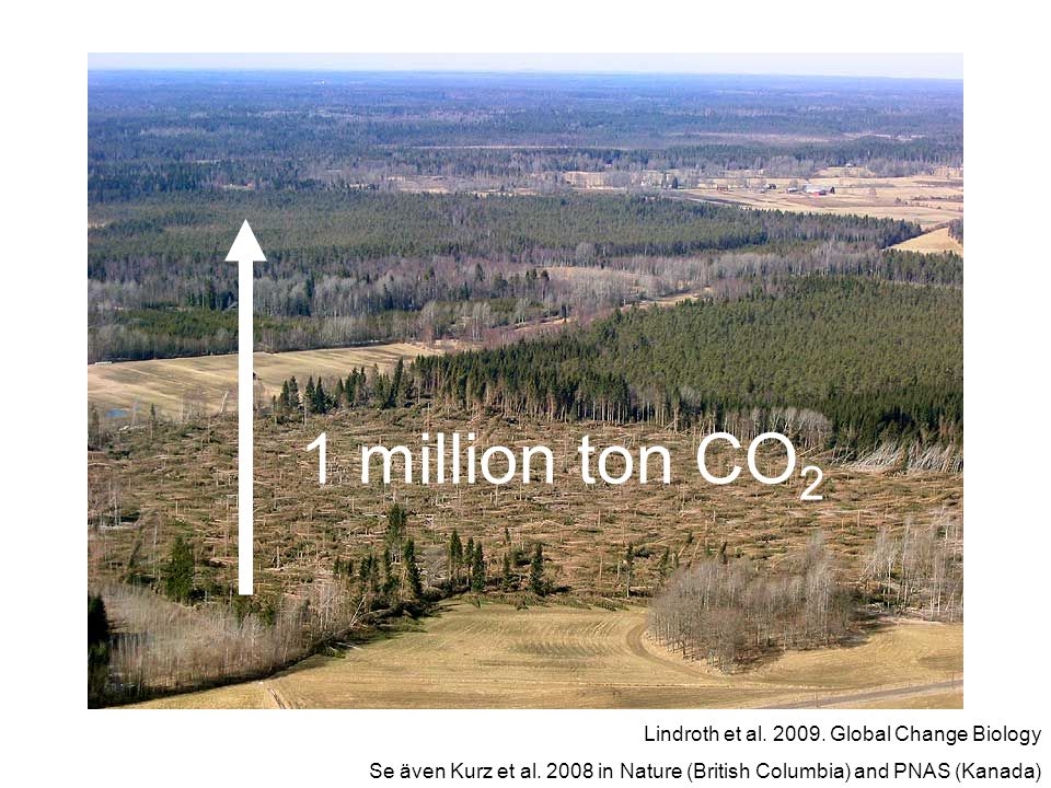 1 million ton CO2 Lindroth et al. 2009. Global Change Biology
