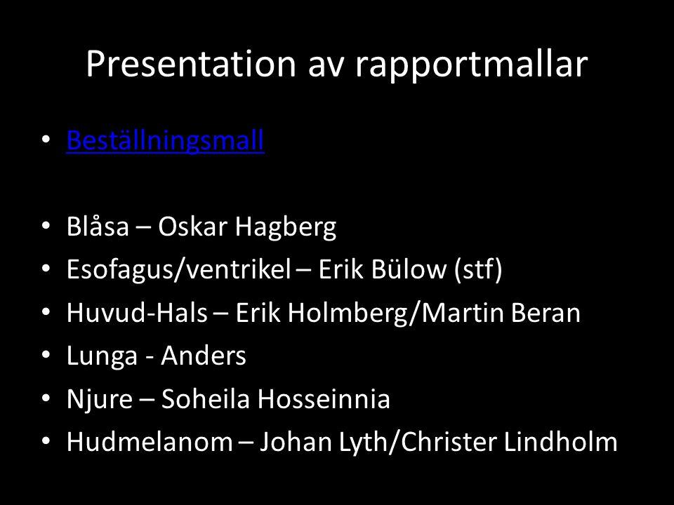 Presentation av rapportmallar