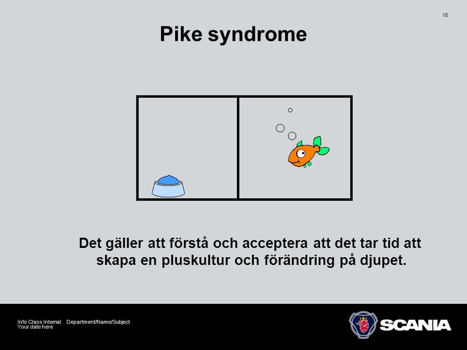 Pike syndrome Det gäller att förstå och acceptera att det tar tid att skapa en pluskultur och förändring på djupet.