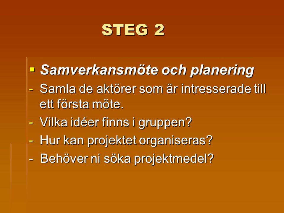STEG 2 Samverkansmöte och planering