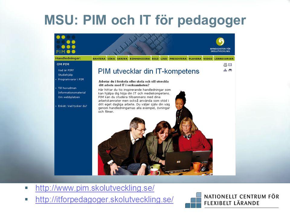 MSU: PIM och IT för pedagoger
