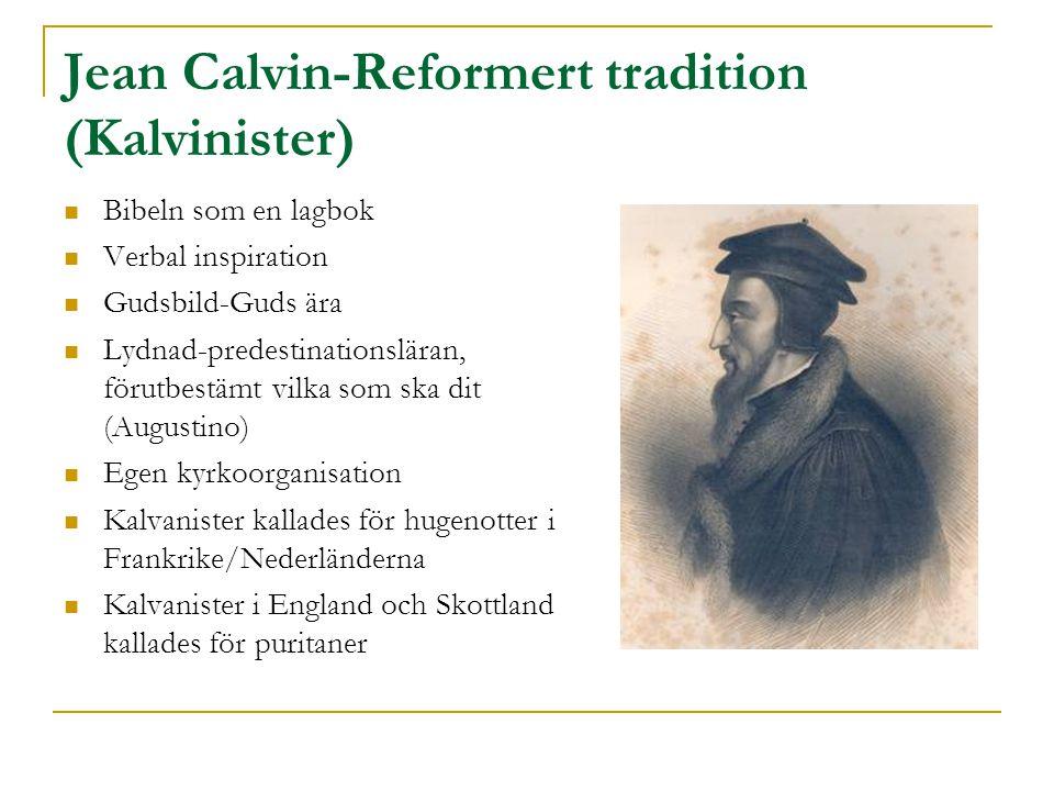 Jean Calvin-Reformert tradition (Kalvinister)