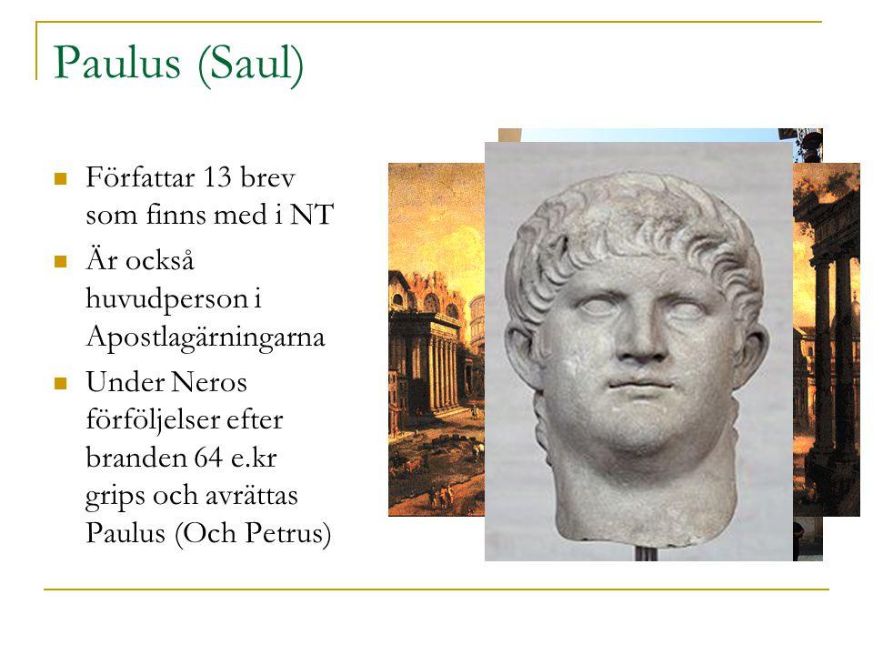 Paulus (Saul) Författar 13 brev som finns med i NT