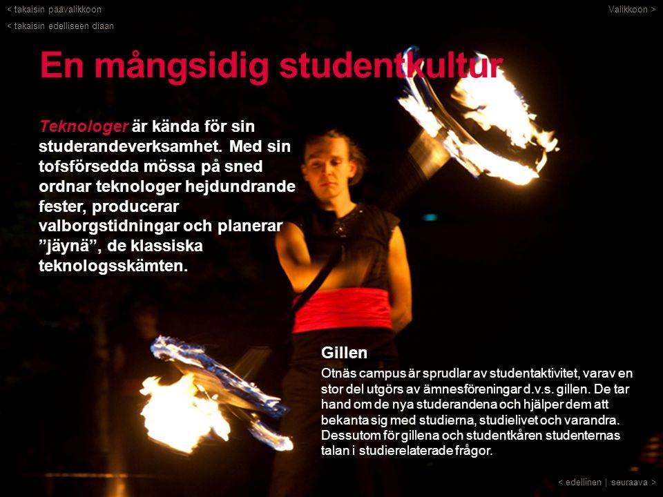 En mångsidig studentkultur