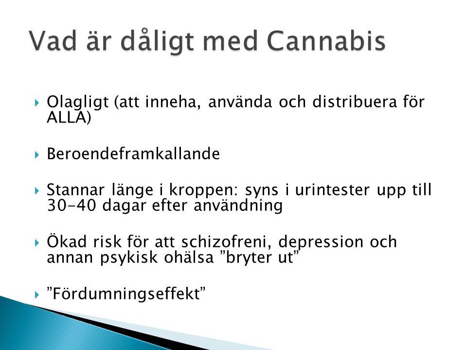 Vad är dåligt med Cannabis