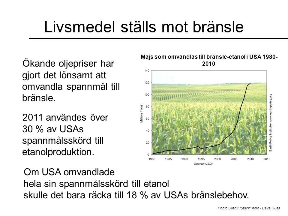 Majs som omvandlas till bränsle-etanol i USA 1980-2010