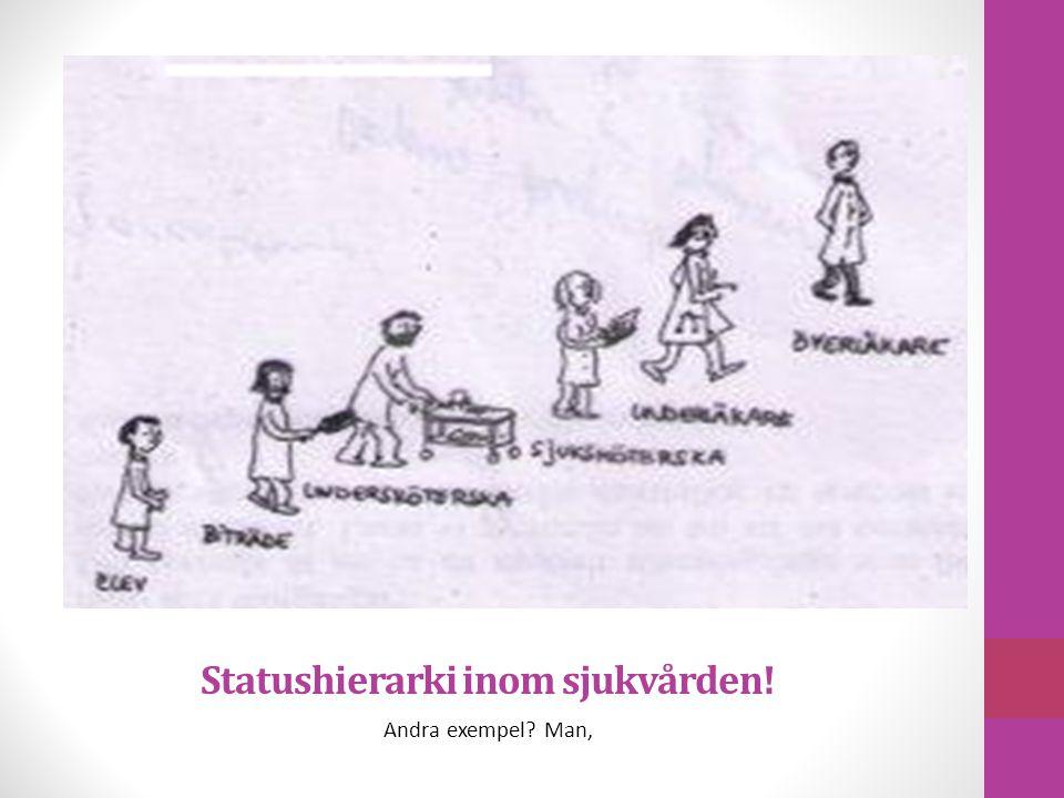 Statushierarki inom sjukvården!