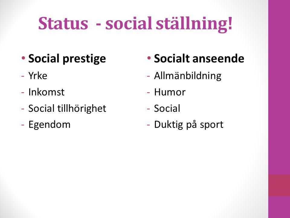 Status - social ställning!