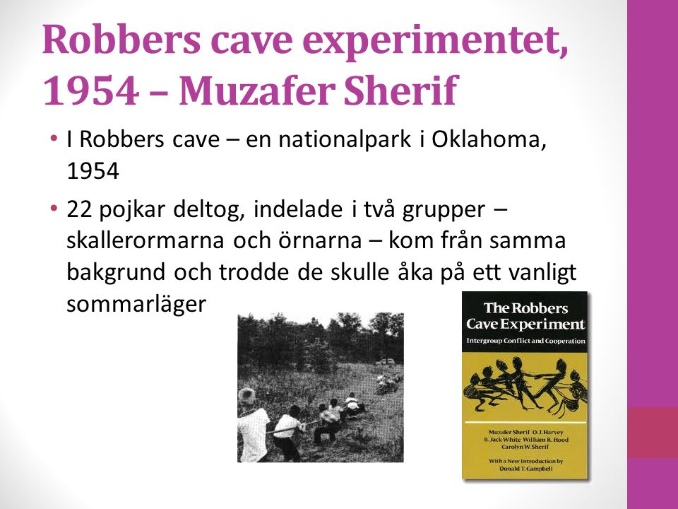 Robbers cave experimentet, 1954 – Muzafer Sherif