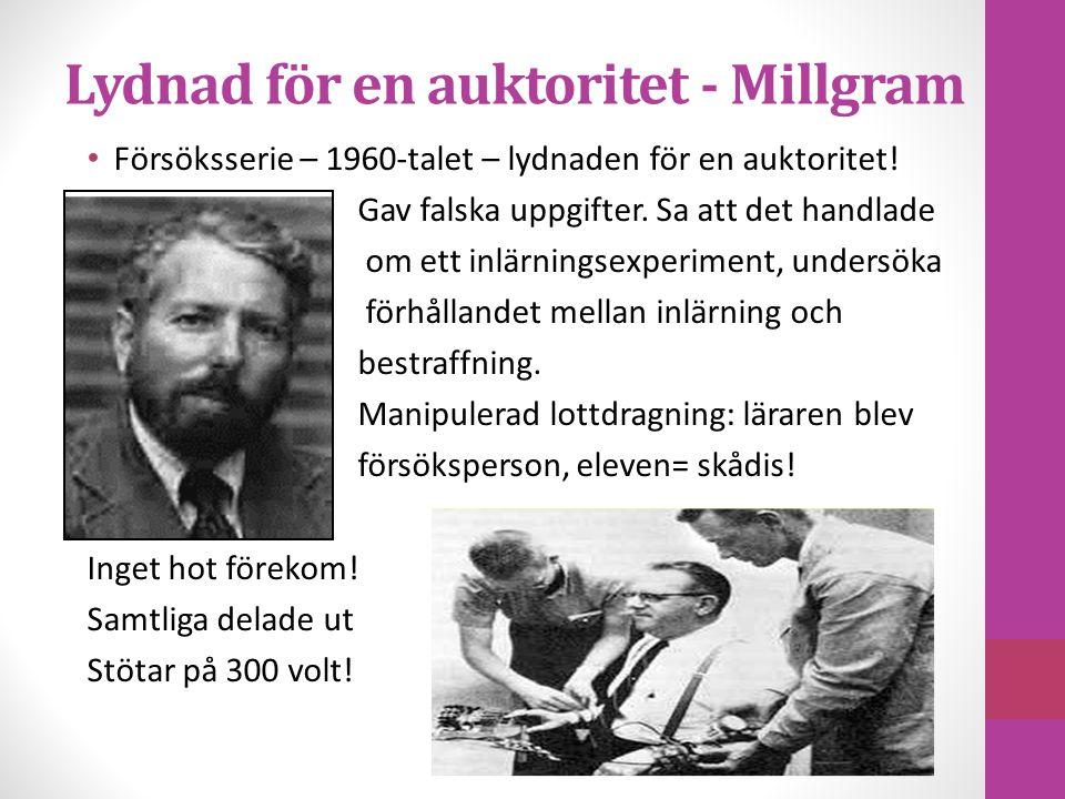 Lydnad för en auktoritet - Millgram