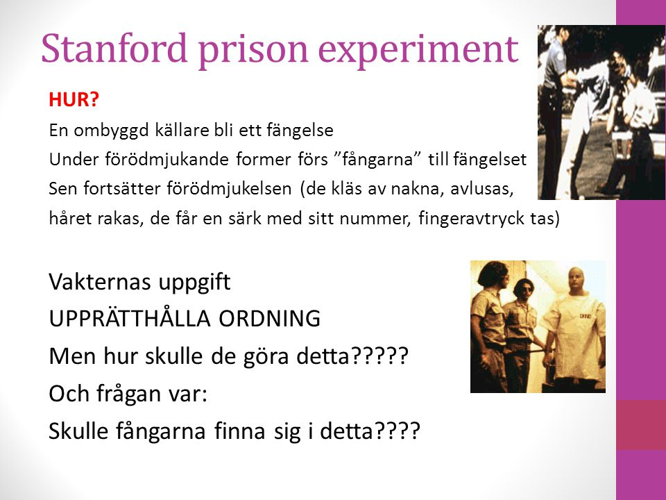 Stanford prison experiment