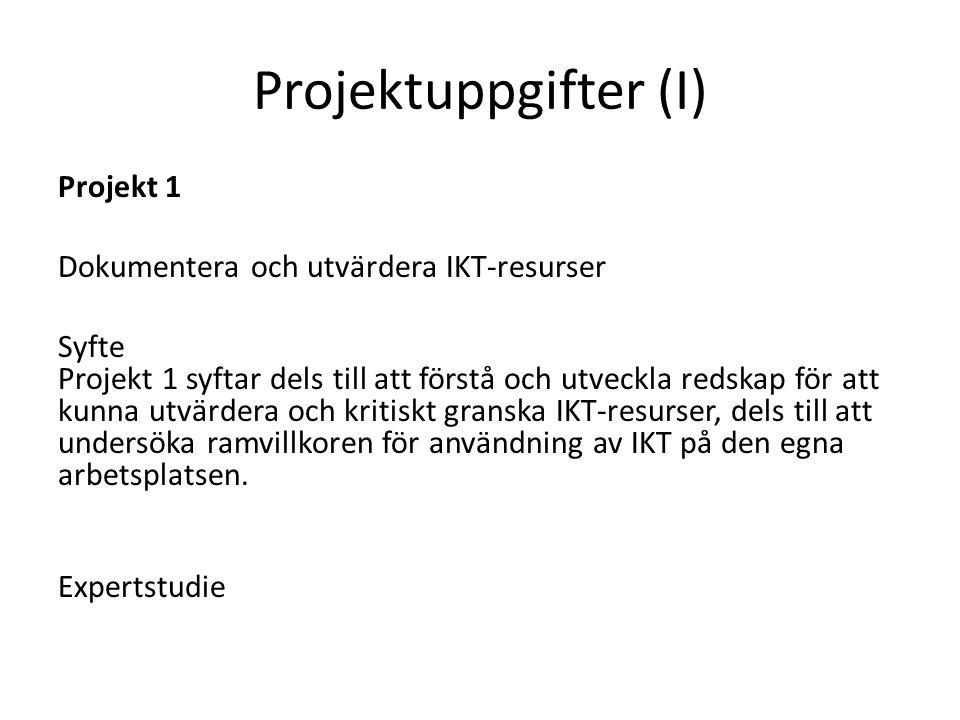 Projektuppgifter (I)