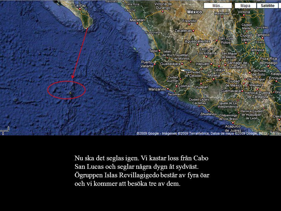 Nu ska det seglas igen. Vi kastar loss från Cabo San Lucas och seglar några dygn åt sydväst.
