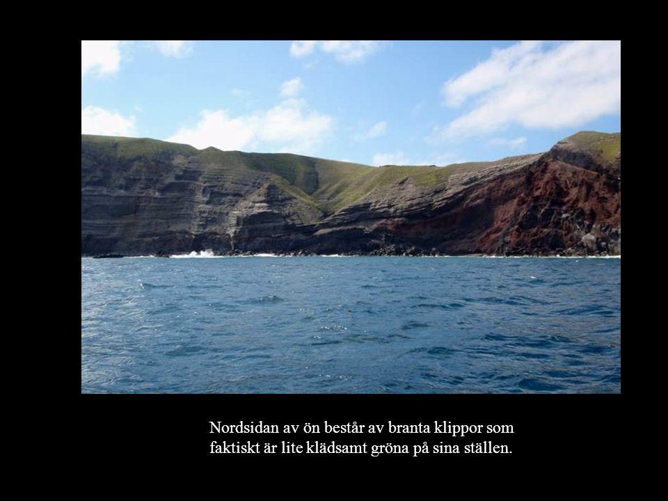 Nordsidan av ön består av branta klippor som faktiskt är lite klädsamt gröna på sina ställen.