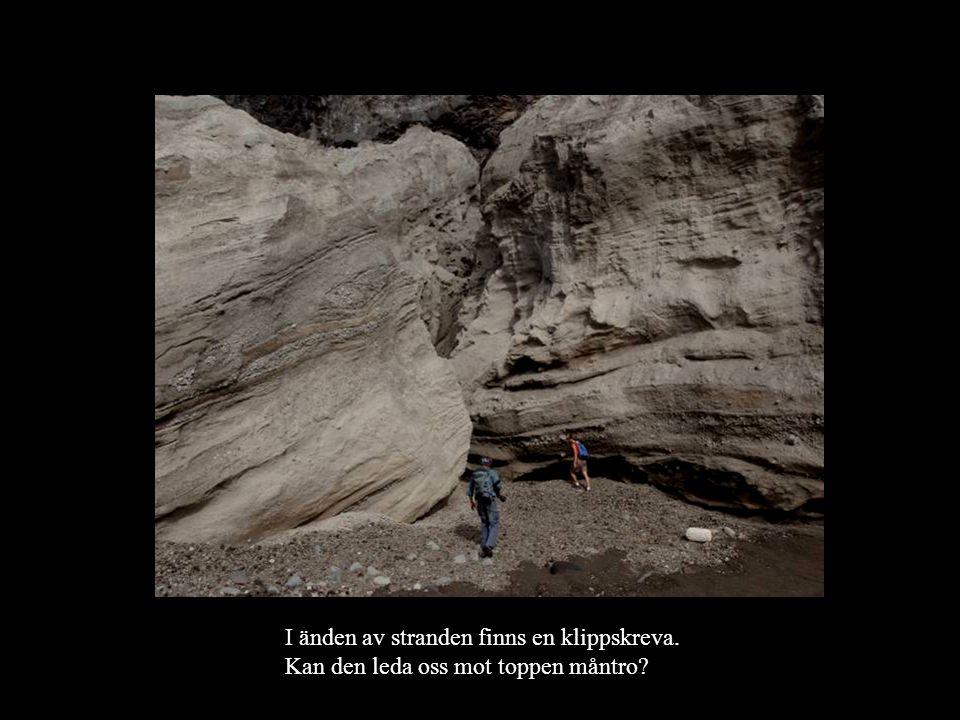 I änden av stranden finns en klippskreva