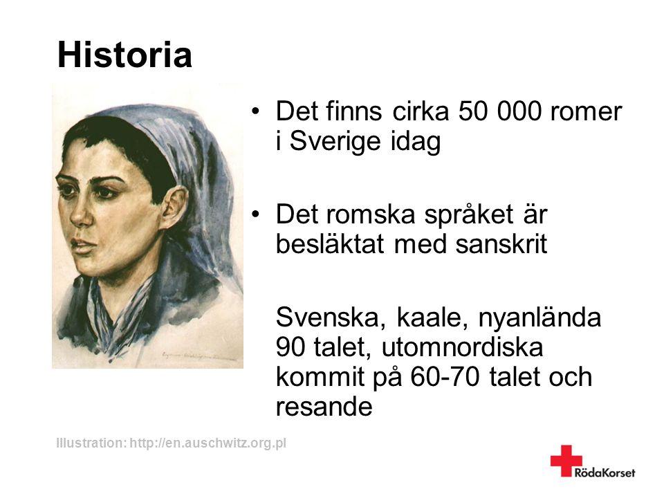 Historia Det finns cirka 50 000 romer i Sverige idag