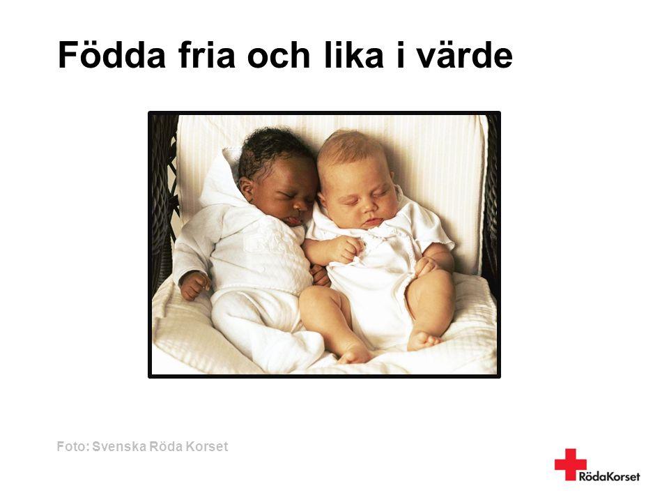 Födda fria och lika i värde