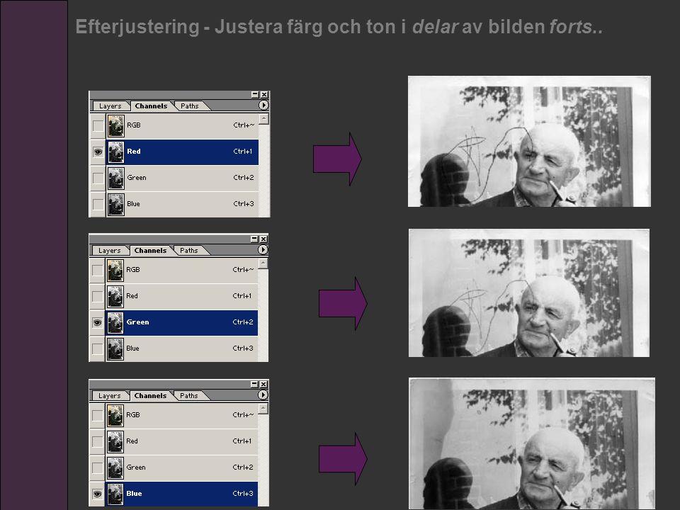 Efterjustering - Justera färg och ton i delar av bilden forts..