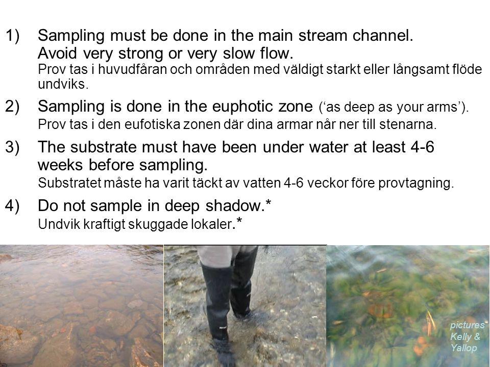 Do not sample in deep shadow.* Undvik kraftigt skuggade lokaler.*
