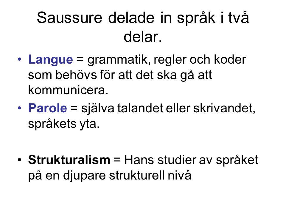 Saussure delade in språk i två delar.