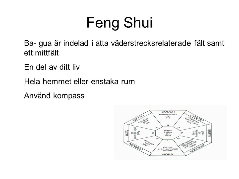 Feng Shui Ba- gua är indelad i åtta väderstrecksrelaterade fält samt ett mittfält. En del av ditt liv.