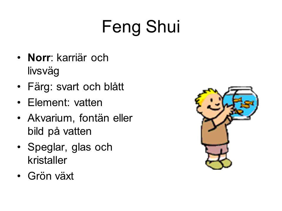 Feng Shui Norr: karriär och livsväg Färg: svart och blått