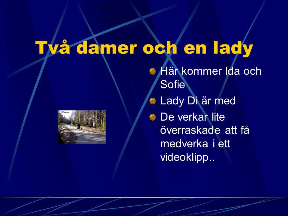 Två damer och en lady Här kommer Ida och Sofie Lady Di är med