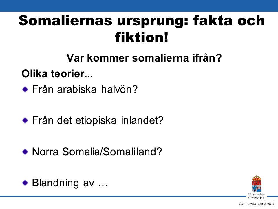 Somaliernas ursprung: fakta och fiktion!