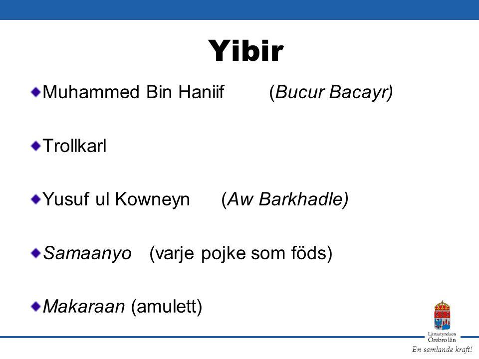 Yibir Muhammed Bin Haniif (Bucur Bacayr) Trollkarl