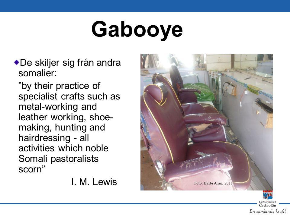 Gabooye De skiljer sig från andra somalier: