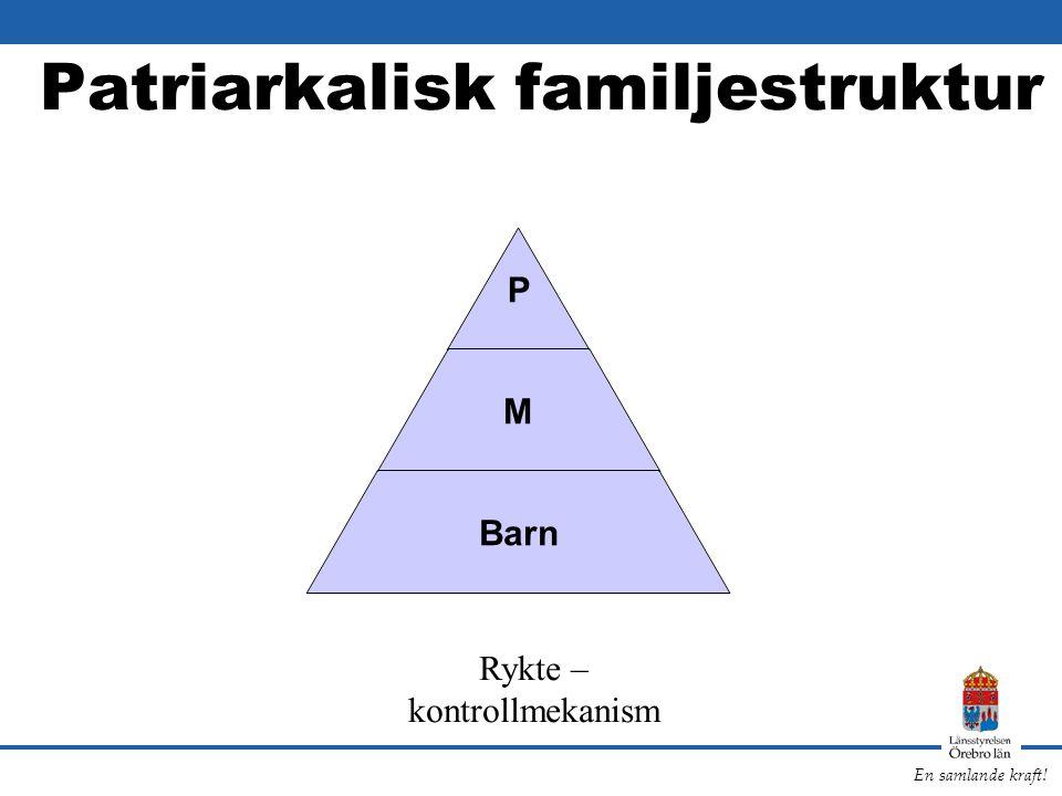 Patriarkalisk familjestruktur