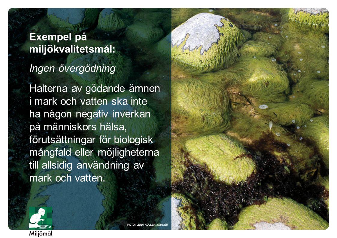 Exempel på miljökvalitetsmål: Ingen övergödning