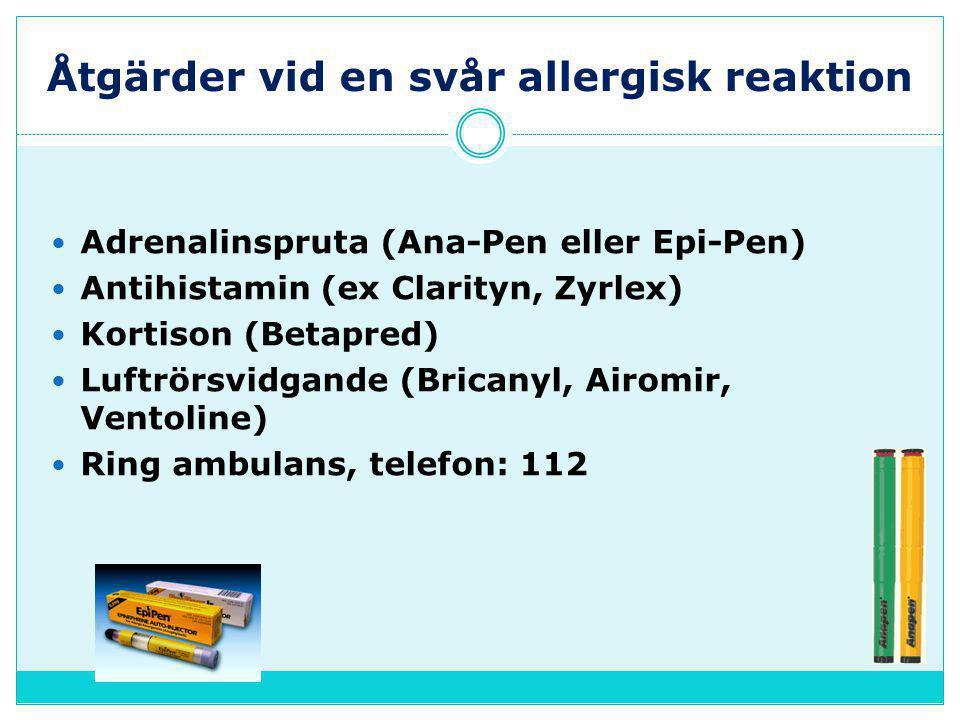Åtgärder vid en svår allergisk reaktion