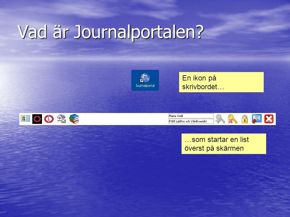 Vad är Journalportalen