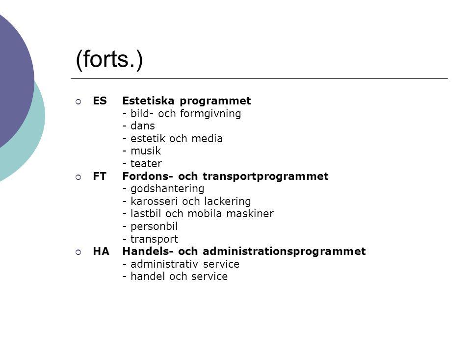 (forts.) ES Estetiska programmet - bild- och formgivning - dans