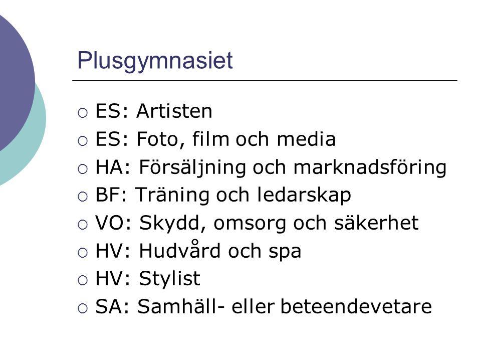 Plusgymnasiet ES: Artisten ES: Foto, film och media
