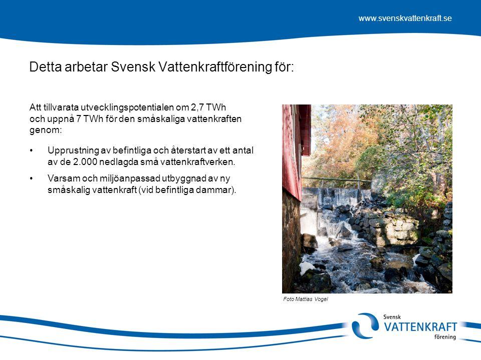 Detta arbetar Svensk Vattenkraftförening för: