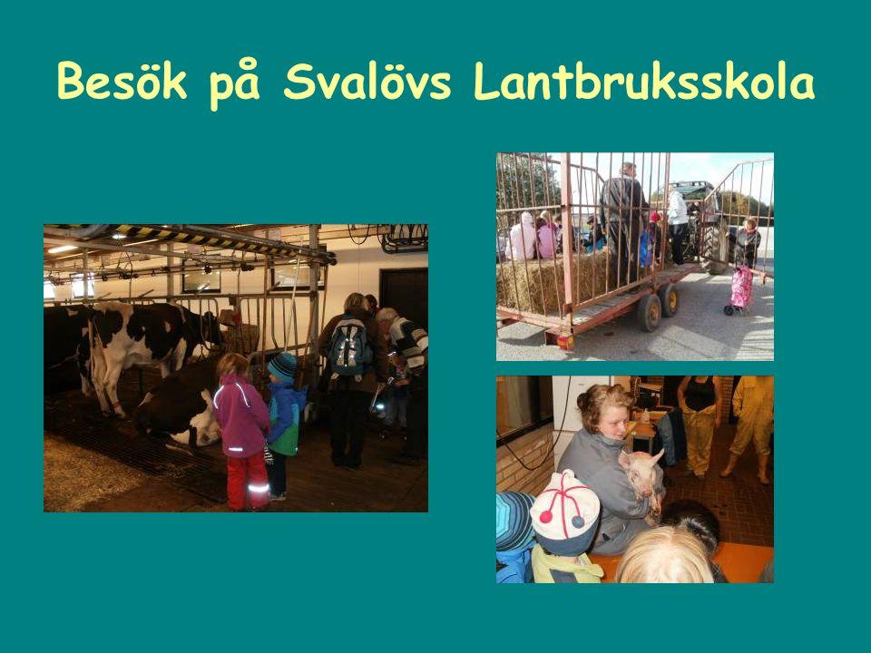 Besök på Svalövs Lantbruksskola