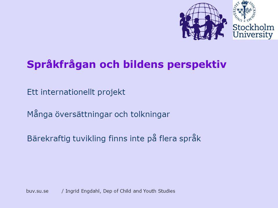 Språkfrågan och bildens perspektiv