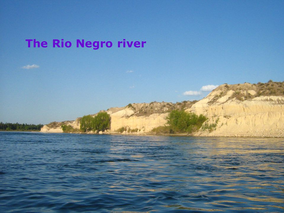 The Rio Negro river buv.su.se