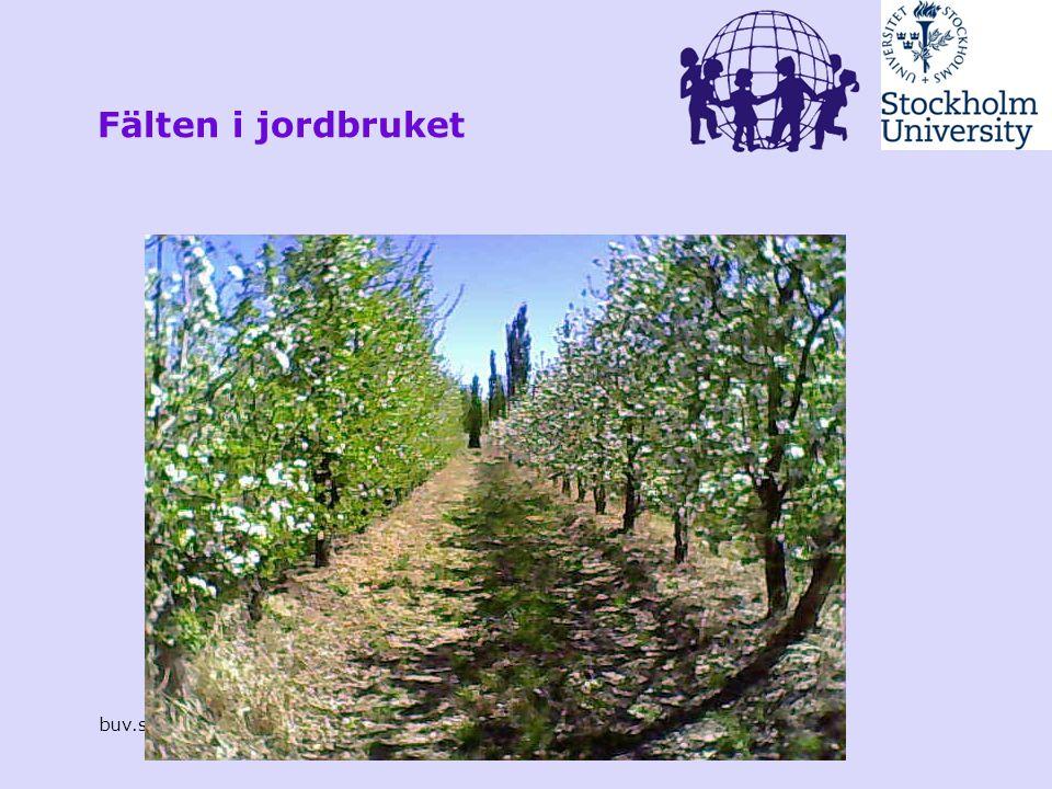 Fälten i jordbruket buv.su.se