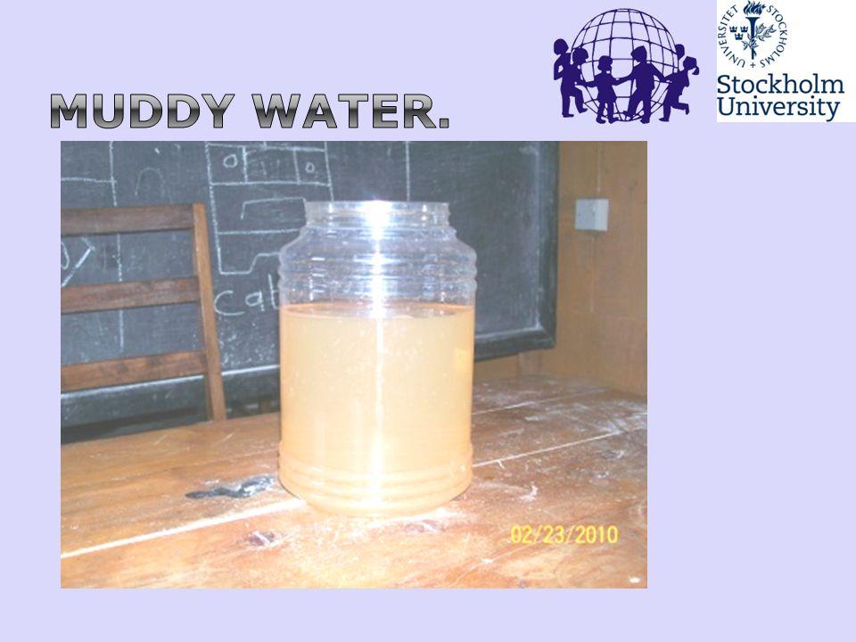 Muddy water. 57