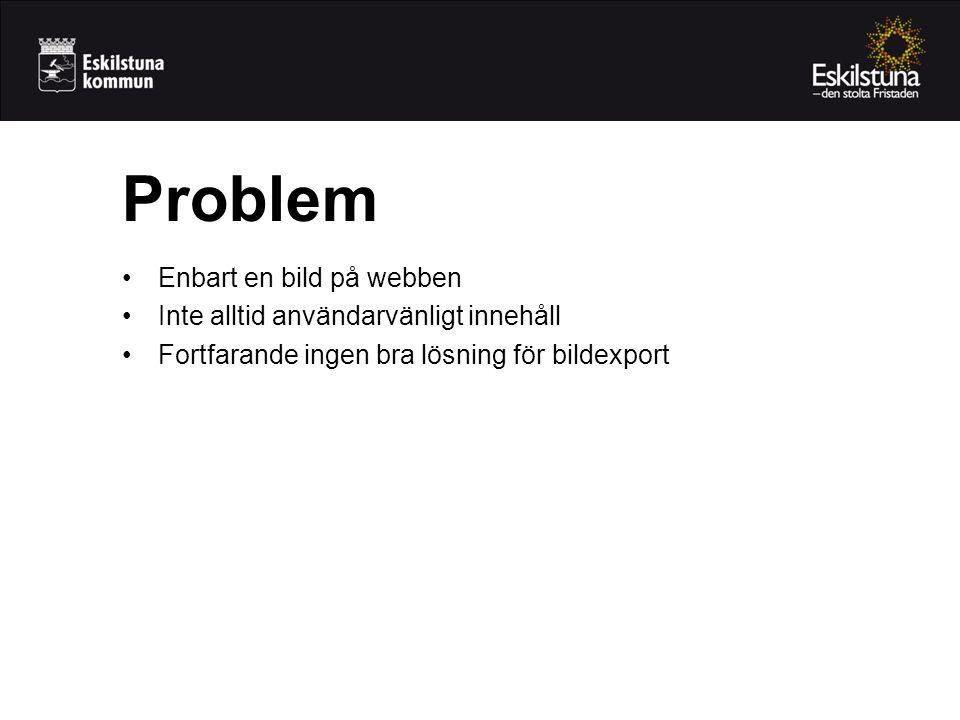 Problem Enbart en bild på webben Inte alltid användarvänligt innehåll