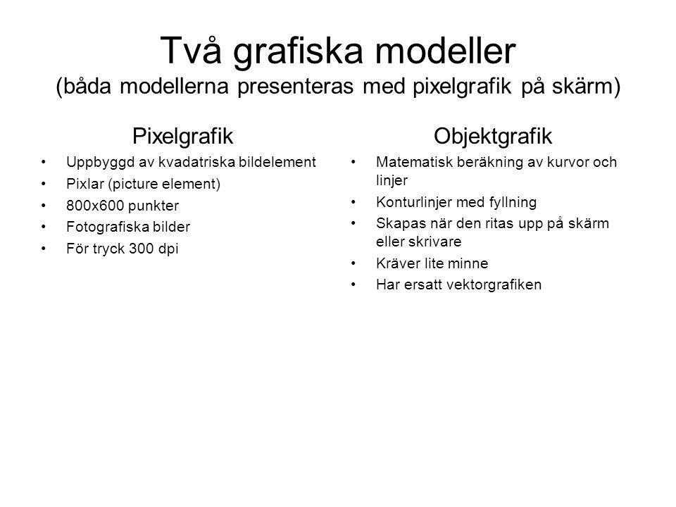 Två grafiska modeller (båda modellerna presenteras med pixelgrafik på skärm)
