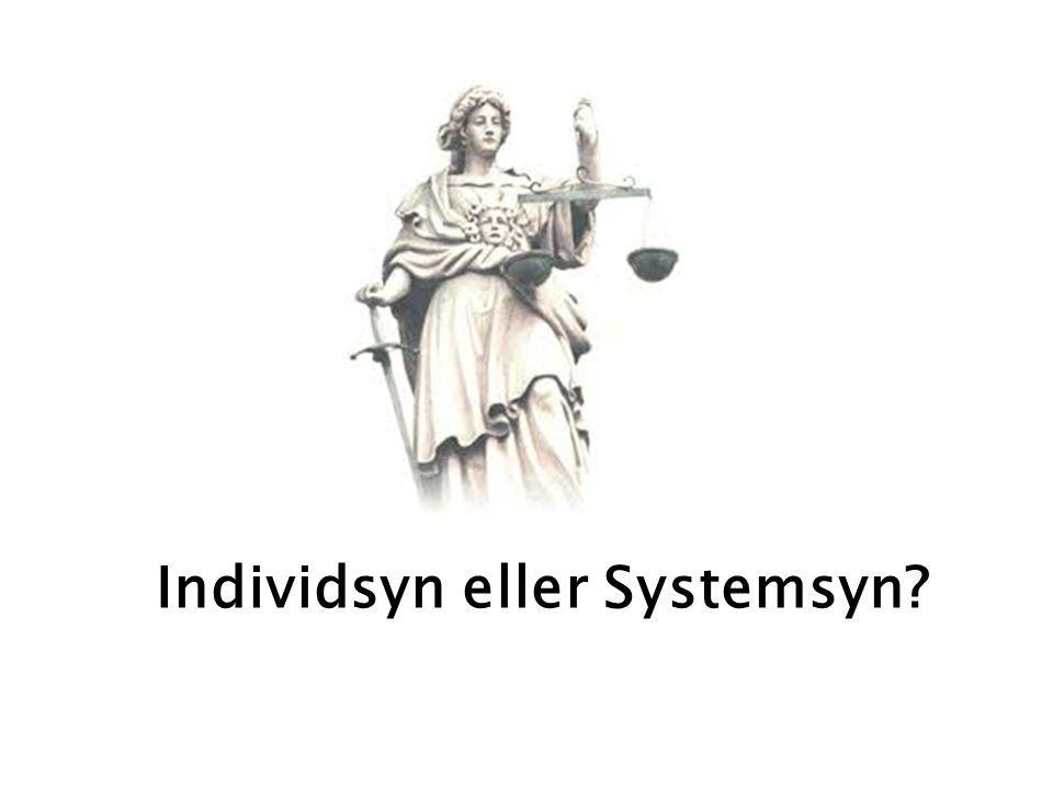Individsyn eller Systemsyn