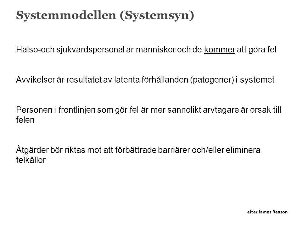 Systemmodellen (Systemsyn)