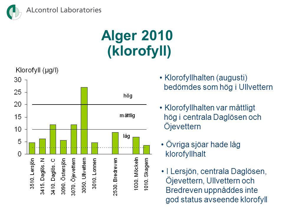 Alger 2010 (klorofyll) • Klorofyllhalten (augusti)