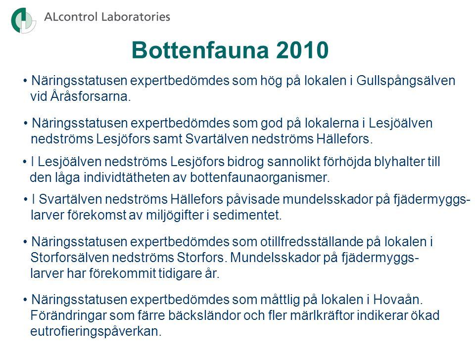 Bottenfauna 2010 • Näringsstatusen expertbedömdes som hög på lokalen i Gullspångsälven vid Åråsforsarna.