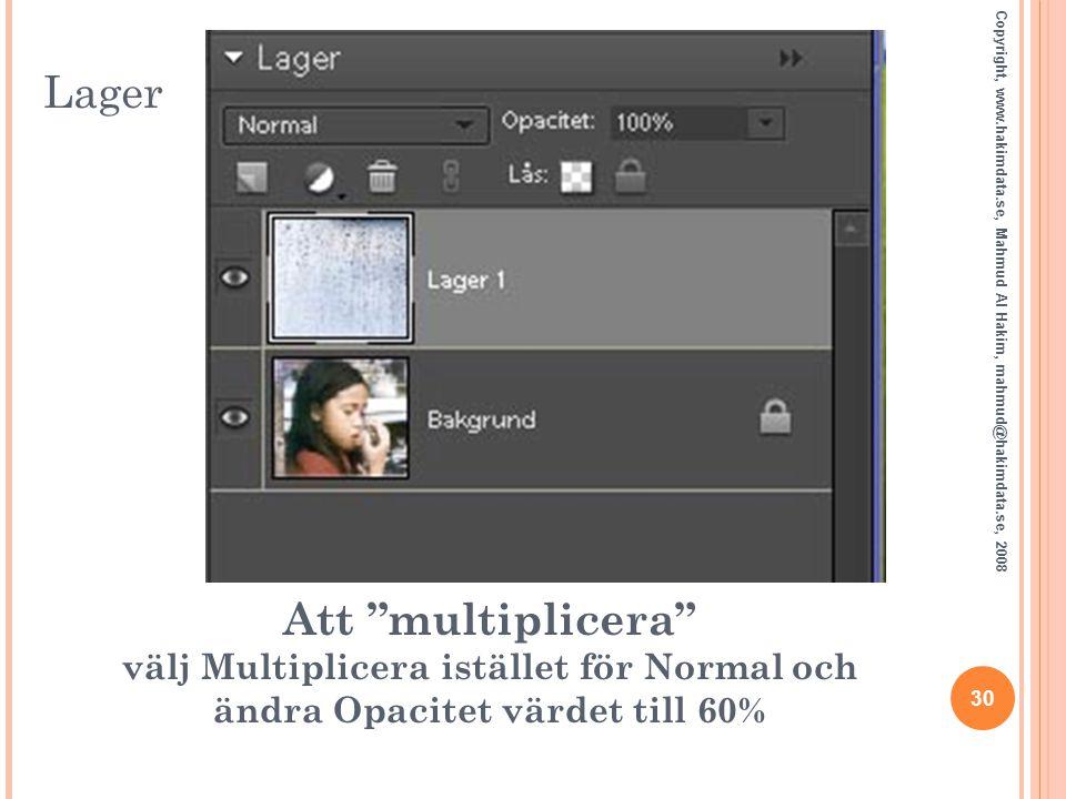 Lager Copyright, www.hakimdata.se, Mahmud Al Hakim, mahmud@hakimdata.se, 2008.