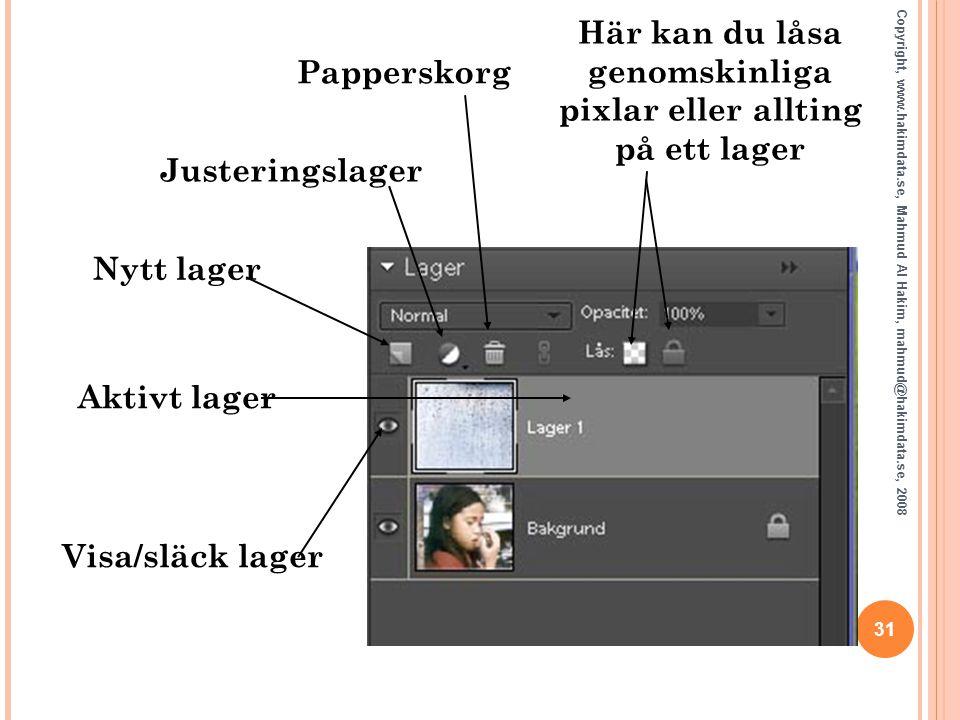 Här kan du låsa genomskinliga pixlar eller allting på ett lager